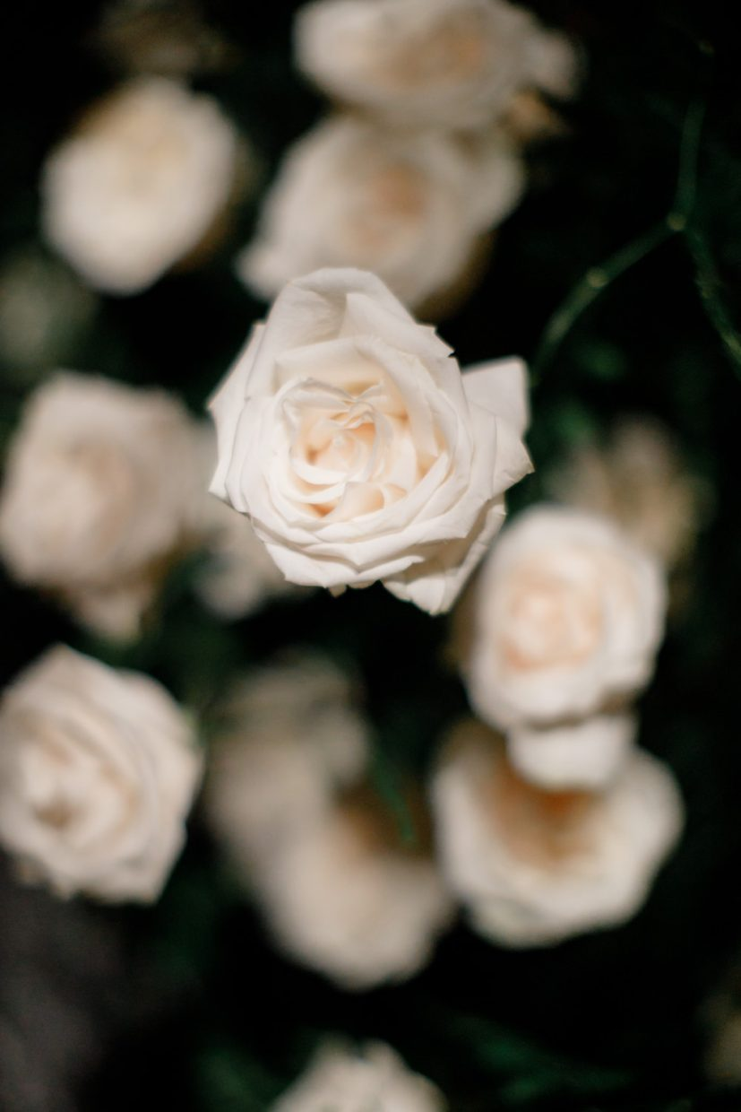 Detail of a rose from floral decoration at Portugal Boho Chic Wedding